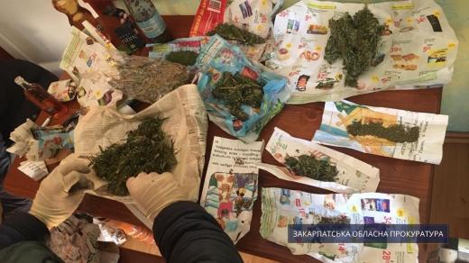 Мешканця Ужгородщини судитимуть за зберігання наркотиків