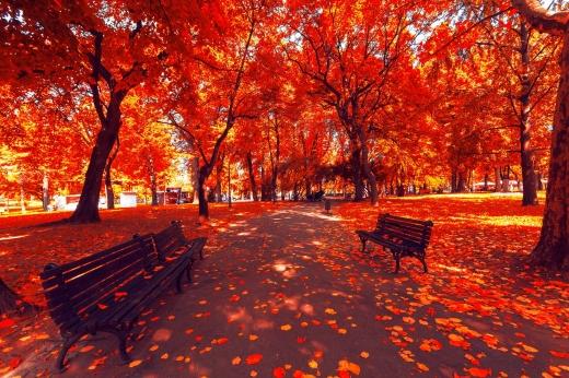 Прогноз погоди на 28 жовтня: сонце й тепло не поспішають покидати Україну