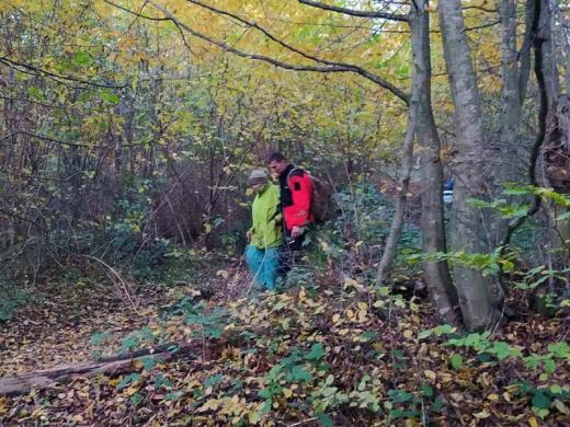 Знайшли: зниклу в лісі закарпатку повернули додому