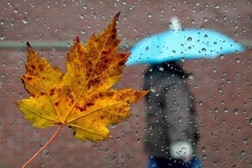 Жовтень завершиться дощем, листопад принесе похолодання