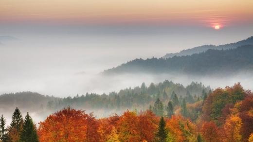 Прогноз погоди на 3 листопада: Захід поливатимуть дощі, а решту країни вкриють тумани