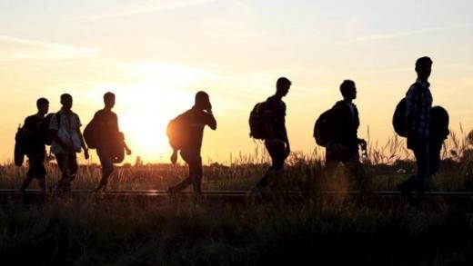 На Закарпатті блокували транзитний трафік переправлення нелегалів до ЄС