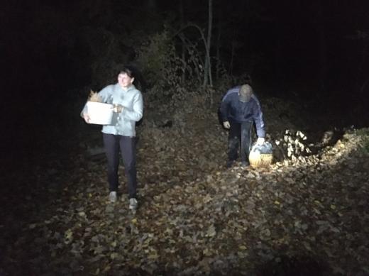 Поблизу Ужгорода, в лісі, заблукало подружжя грибарів