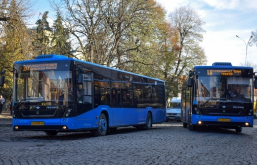 В Ужгороді відновили роботу громадського транспорту