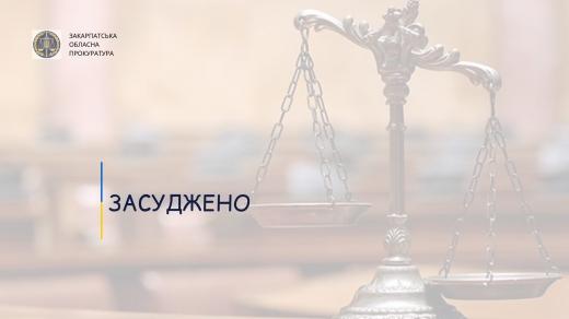 За розбійний напад на мешканку Берегова закарпатець відсидить 8 років за ґратами