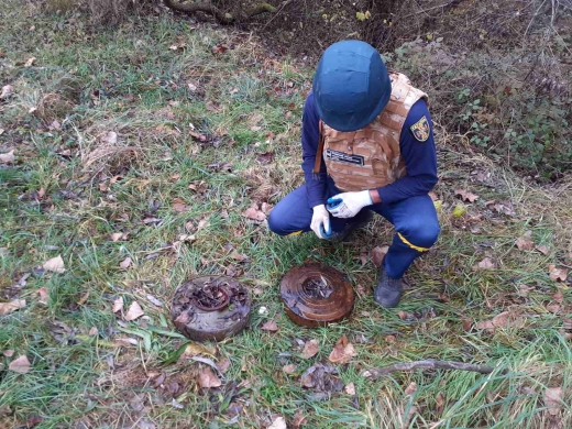 Збирав хмиз, а натрапив на міни: закарпатець виявив небезпечні предмети