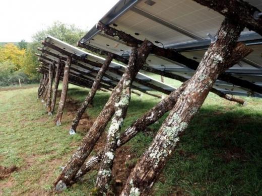 Ноу-хау французів: опорами для сонячних панелей стали дерева
