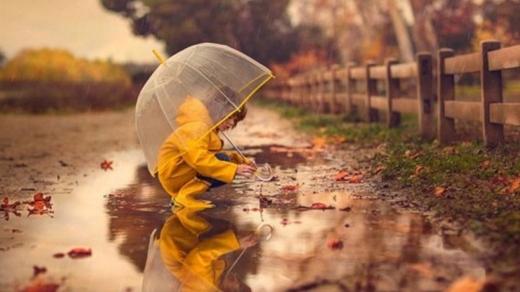 Прогноз погоди на 23 листопада: Захід України накриють дощі