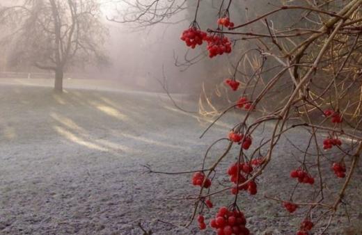 Синоптики прогнозують від 8° морозу до 10° тепла