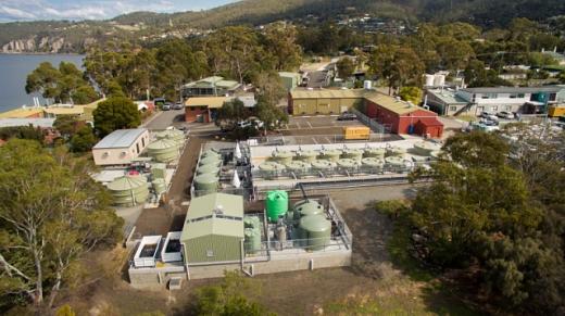 """На Тасманії побудують завод з виробництва """"зеленого"""" водню потужністю 250МВт"""