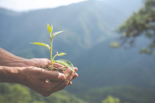 Євросоюз збільшить видатки на охорону довкілля на 37%