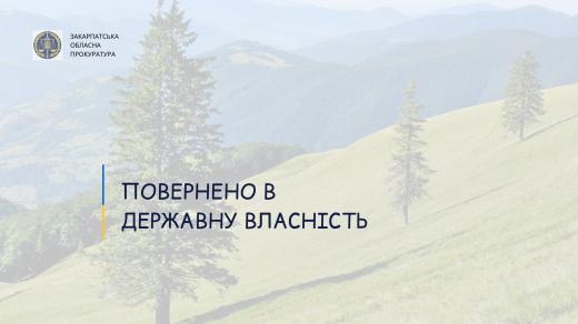 Повернено у державну власність ділянку вартістю 2 млн грн на Хустщині