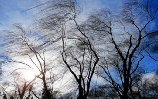 Синоптики попереджають про поривчасті вітри на початку тижня