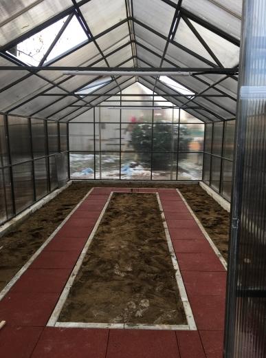 У Мукачеві, в одній з шкіл, з'явиться ботанічний сад
