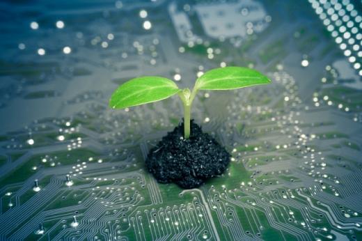 Японія інвестує 19 млрд доларів у «зелені» технології