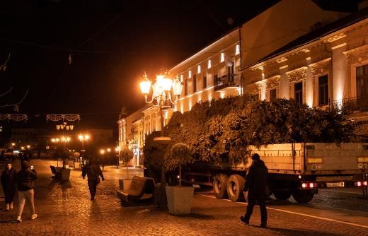 Ужгород святковий: в центрі міста вже встановили головну ялинку