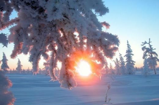 Зима готує сюрпризи: синоптики дали прогноз, яка погода буде перед Новим роком, а також у січні та лютому