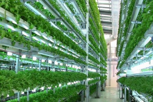 """В Європі відкрилася найбільша ферма-хмарочос на """"зеленій"""" енергії"""