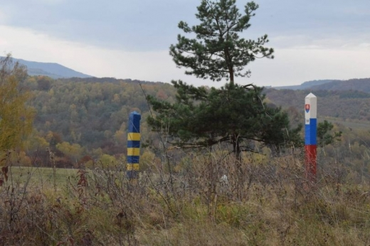 Українські та словацькі прикордонники спільно затримали нелегалів