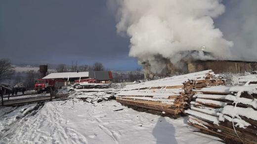 На Закарпатті загорівся деревообробний комбінат