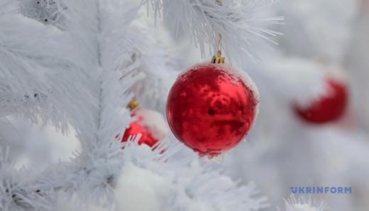 Скільки коштує новорічне дерево на Закарпатті?