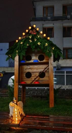 У Мукачеві з'явився будинок для безпритульних котів