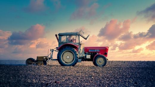 Фермери Закарпаття отримали найменшу фінансову підтримку для розвитку господарств