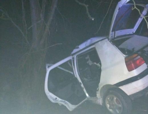 На Перечинщині авто врізалось в дерево на узбіччі: загинуло двоє людей