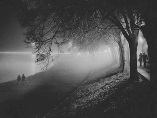 Туманний Ужгород у світлинах Харі Крішнана