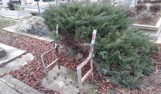На цвинтарі у Берегові вандали понищили лавиці