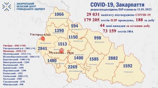 На Закарпатті за добу виявлено 44 випадки COVID-19