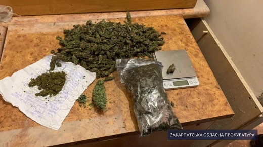 Понад пів кілограма наркотиків виявили у помешканні мукачівця