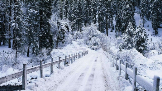 Чи надовго в Україні хуртовини та мороз: прогноз синоптиків