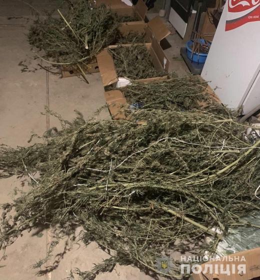 Закарпатець зберігав вдома понад 3 кілограми наркотиків