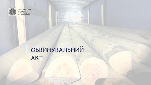 Через спробу контрабандного експорту деревини громадянин Греції постане перед судом