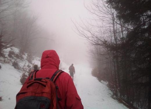 В Карпатах шукали заблукалих туристів: подробиці від рятувальників