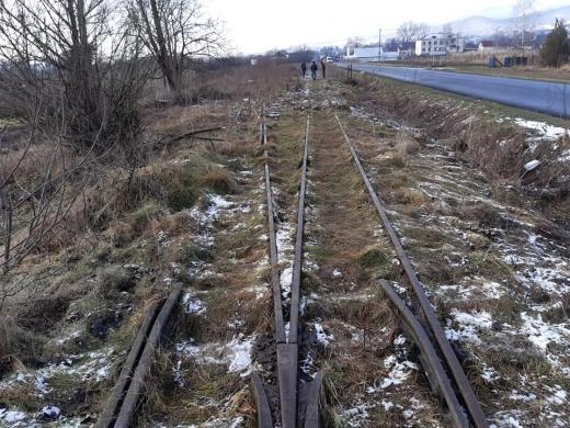 Демонтаж залізничної колії Боржавської вузькоколійки: проводиться перевірка