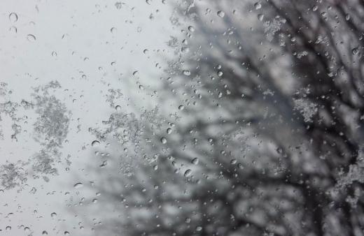 Прогноз погоди на 27 січня: Україну заливатимуть дощі