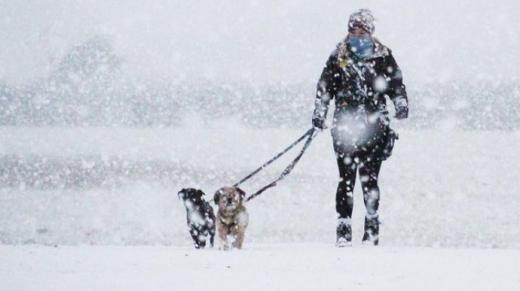 Україну охопить снігова й морозна погода