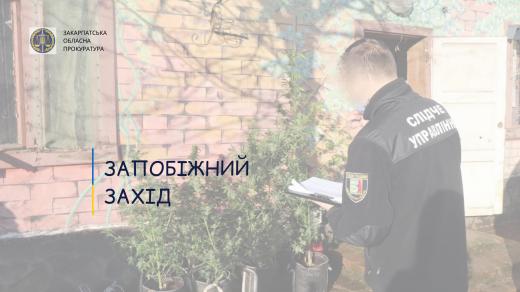 Закарпатська прокуратура оскаржить домашній арешт для учасниці злочинного угрупування
