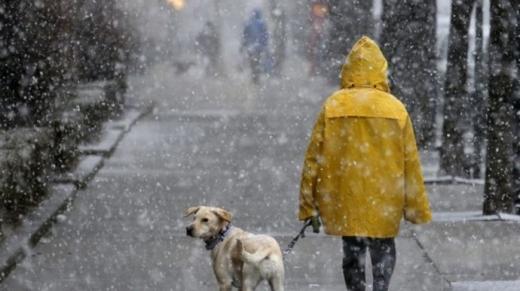 Дощ, сніг та до 20° морозу в Україні до кінця тижня