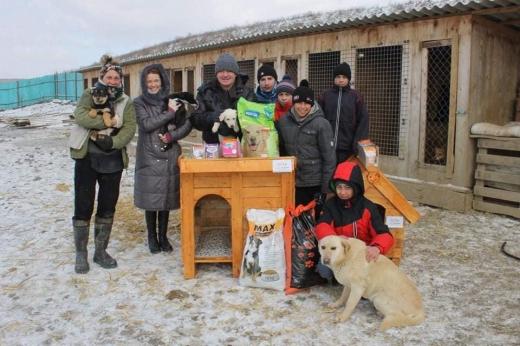 В Ужгороді діти зробили для собак з притулку хатинки (ФОТО)