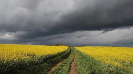 Україні прогнозують аномальну весну: чого чекати фермерам