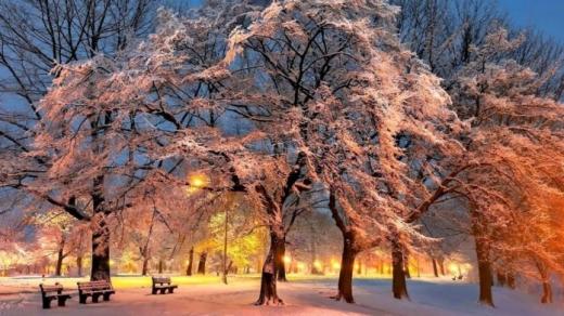 Прогноз погоди на 23 лютого: в Україну повертаються морози