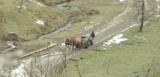 Закарпатське село на межі зникнення (ВІДЕО)