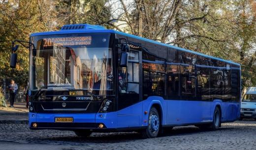 В Ужгороді на одному з маршрутів громадського транспорту зменшиться кількість автобусів