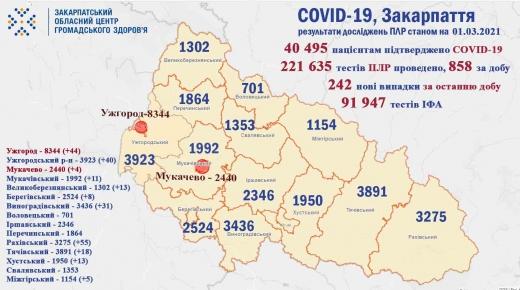 Ситуація щодо COVID-19 на Закарпатті за минулу добу (Інфографіка)
