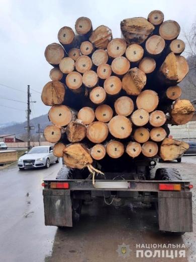 На Рахівщині зупинили дві вантажівки з деревиною з сумнівною документацією (ФОТО)
