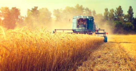 Україна планує скоротити парникові викиди агросектору на 14% до 2030 року