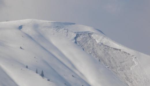 """У мережі опублікували фото лавини, що зійшла в нацпарку """"Синевир"""""""